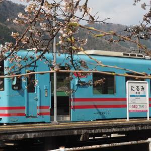 春-樽見鉄道の旅(日本の車窓から2020年4月4日撮影)
