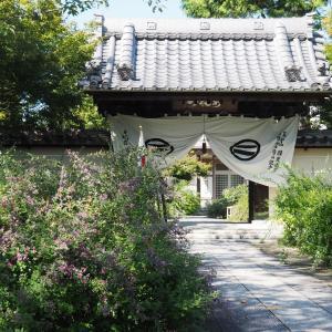 円光禅寺(萩寺)2020年9月21日撮影