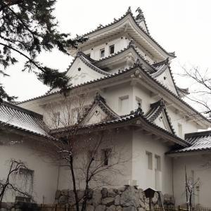 雪の大垣城(2021年1月30日撮影)