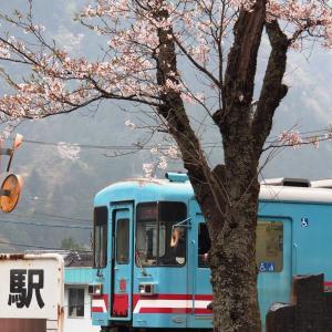 春-樽見鉄道の旅(日本の車窓から2021年4月3日撮影)