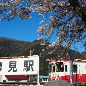 春-樽見鉄道の旅(日本の車窓から2019年4月13日撮影)