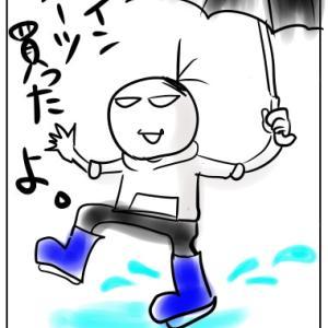 梅雨なので