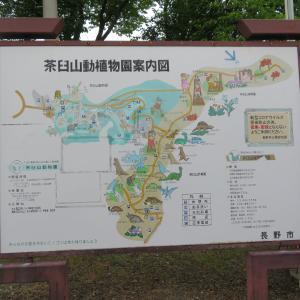 南長野 茶臼山動植物園案内図 実物大の恐竜模型がたくさんあります