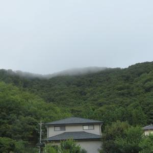 雨模様 昨日朝