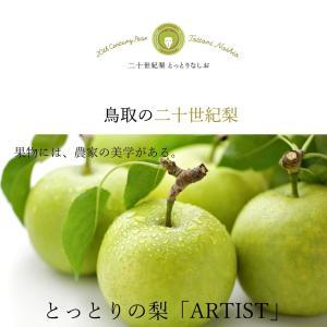 梨の芸術品「AIRTIST」予約販売開始!