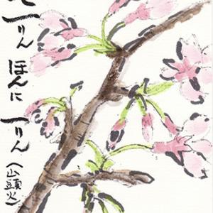 絵手紙 桜と桃の花