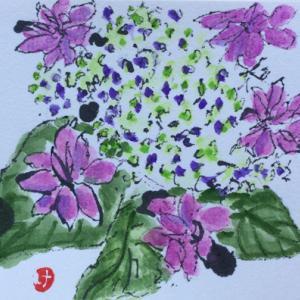 絵手紙 紫陽花