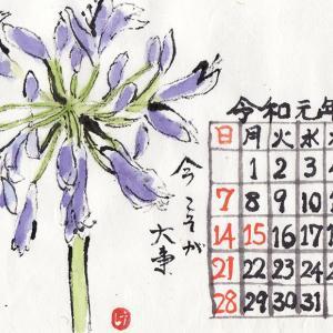 令和元年 7月絵手紙カレンダー