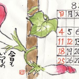8月の絵手紙カレンダー