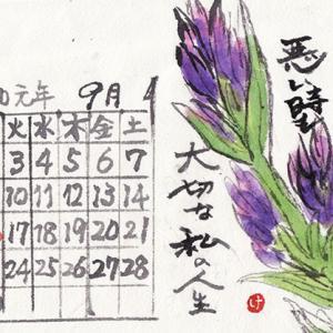 9月の絵手紙カレンダー