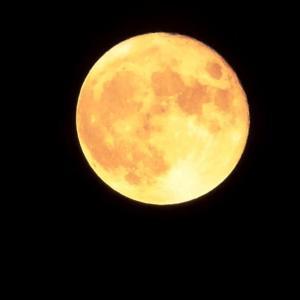 ★8月の満月「スタージャンムーン」を激写?