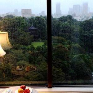 ★椿山荘、朝6時前に起きて「大雲海」鑑賞。