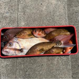 2馬力ゴムボートepisode23 大鯛釣れました