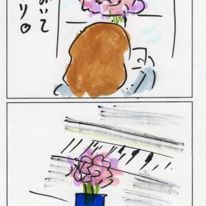 僕は特別じゃない@Sugi作詞を作曲してうたったと8コマ漫画と花を撮影して楽しむ