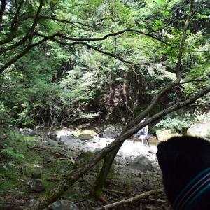 夏休み−川 その2