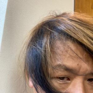自分の髪で実験するの巻