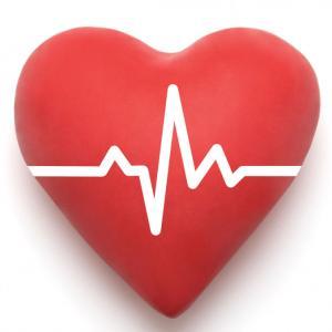 名前の母音から導く「ハート数」と「心臓」への考察