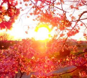 3月21日春分の日、緊急開催!人生を動かす「ライフシール」