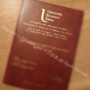 イタリア国立大学:大学システム