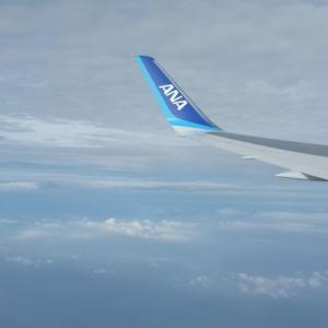 ANAのフライト シンガポールから成田は快適