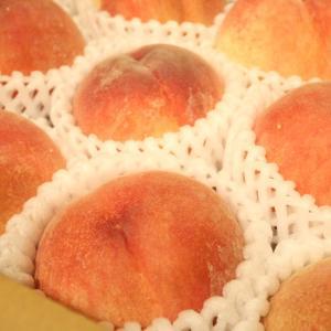 研究 桃のカット