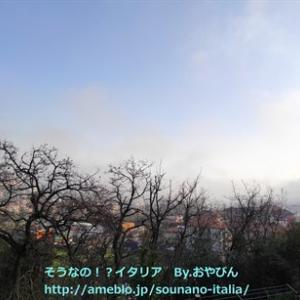 レアな現象、海からの霧に覆われる・・・