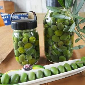 自家製オリーブの実を美味しくたべる方法
