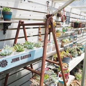 屋根アリの多肉棚増設で雨から守る!