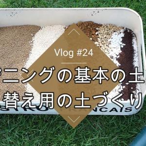 多肉植物用とオリーブ用の土作り