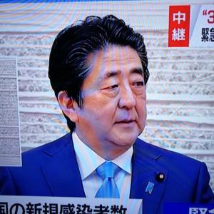 収束へ向けての道! 安倍首相の先実の記者会見! 感動した!! これで日本も安心! 皆で頑張れば明