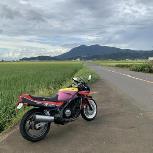 ヤフオクで買ったバイク(FZ750)は極上車の夢を見るか FZ750車検です。