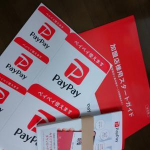 paypayの審査が通りました!