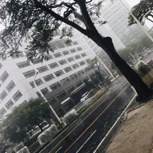 只今、台風中です。
