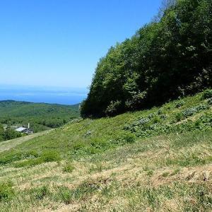 2020年5月の山・・・手稲山 ハイランドコース