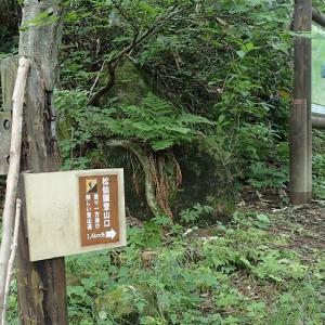 8月の山・・・松仙園へ愛山渓から
