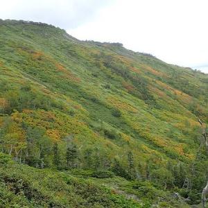 9月の山・・・大雪山系 銀泉台からクモイリンドウ見て高原温泉に縦走