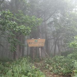 9月の山・・・大雪山系 西ヌプカウシヌプリでガス日和