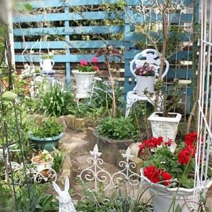 *My garden in April*