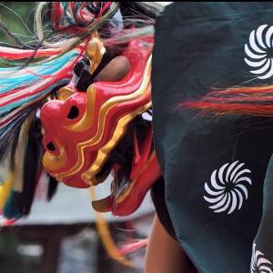 祭りの写真の撮り方|獅子舞の躍動感を撮りに秋祭りに行ってきました。