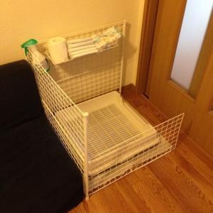 赤ちゃんと犬の暮らし トイレ問題編