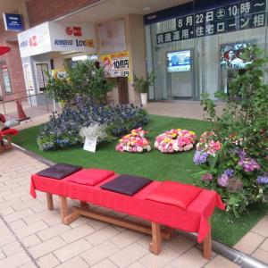 商店街の癒しの空間・・・。
