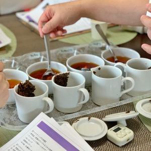集中紅茶コース募集中