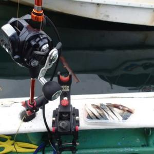 東京湾 タチ&アジリレー釣行