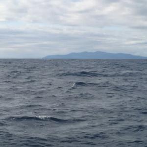 遠征 沖の瀬釣行記2