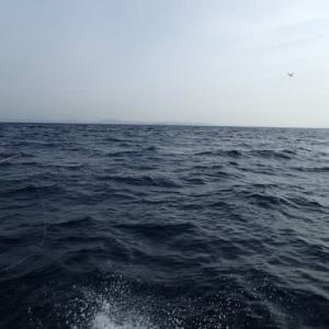 遠征 沖の瀬釣行記3