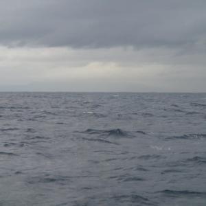 沖の瀬 五目釣行記2