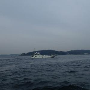 東京湾 タチウオ 釣行記
