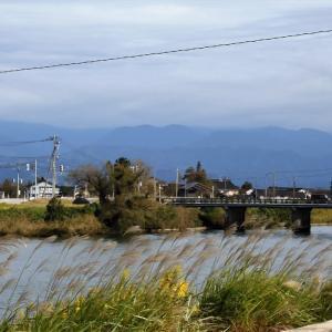 白岩川あたり、寒さを感じる晩秋的風景・・・富山市水橋