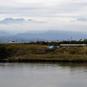 しっとり曇る日の白岩川べり、雲間の山、貨物列車、しっとりしたドウダン・・・富山市水橋