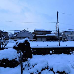春に向かうかとの思いを外し、夜半から積雪・・・富山市水橋